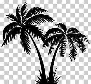 Palms Casino Resort Silhouette Arecaceae PNG