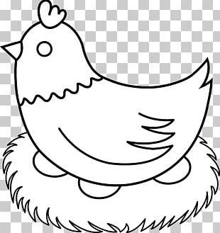 Chicken Drawing Line Art Hen PNG