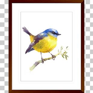 Art Watercolor Painting Bird Oil Painting PNG