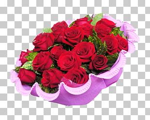 Garden Roses Beach Rose Valentines Day Flower Red PNG