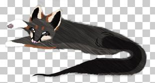 Whiskers Cat Dog Paw Canidae PNG