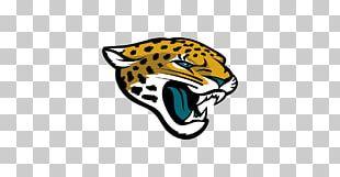 Jacksonville Jaguars NFL Super Bowl New England Patriots AFC Championship Game PNG