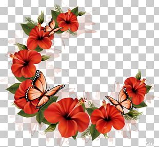 Cut Flowers Floral Design PNG
