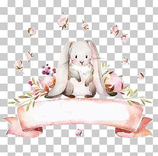 European Rabbit PNG
