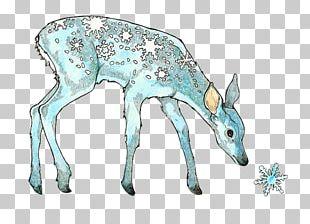Reindeer Drawing Snow Watercolor Painting PNG