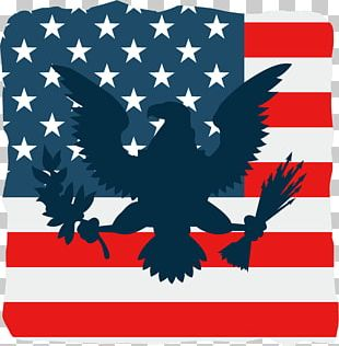 American Flag And Eagle PNG