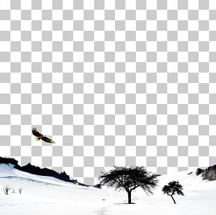 Bird Black And White Sky Winter PNG
