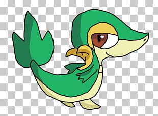 Duck Goose Cygnini Water Bird PNG