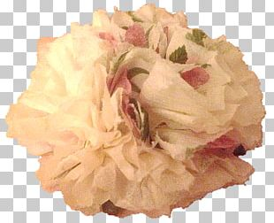 Cut Flowers Flower Bouquet Cabbage Rose Floral Design PNG