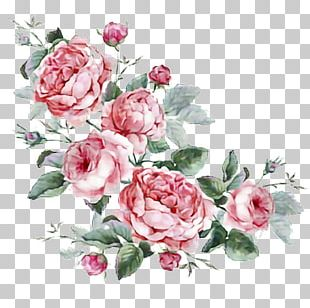 Floral Design Stock Photography Drawing PNG