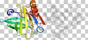 Human Behavior Organism Graphic Design PNG