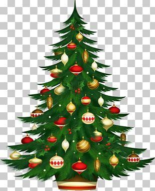 Christmas Tree Candle Christmas And Holiday Season Christmas Ornament PNG