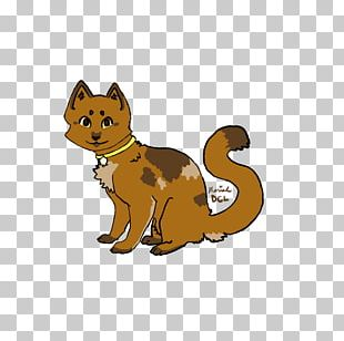 Whiskers Red Fox Cat Tail Wildlife PNG