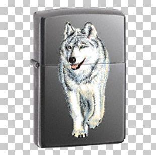 Zippo Lighter Gray Wolf Brand Warranty PNG