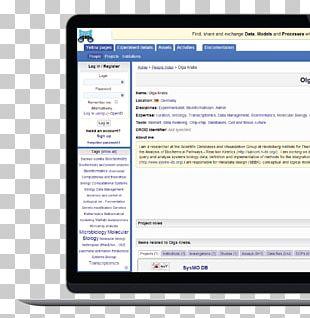 Computer Program Web Application Development Computer Software PNG