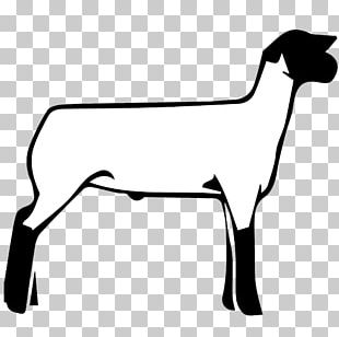 Sheep Boer Goat Cattle Graphics PNG