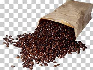 Coffee Bean Kopi Luwak Cafe Espresso PNG