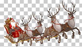 Santa Claus Reindeer Sled PNG