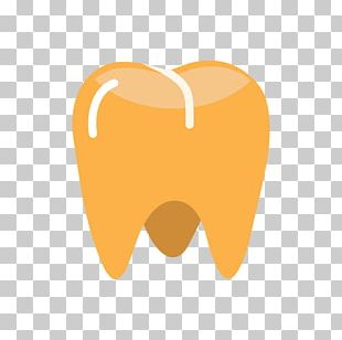 Frankfort Smiles Dental North White Street Tooth Dentist PNG