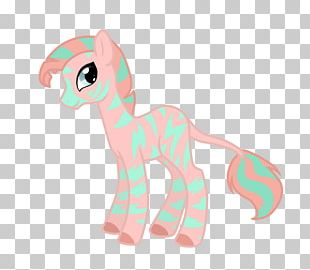 Horse Cartoon Desktop PNG