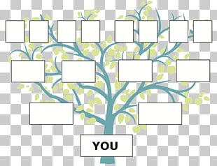 Family Tree Genealogy Ancestor FamilySearch PNG
