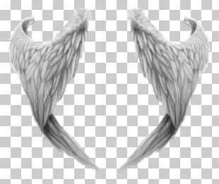 Fantasy Angel Wings PNG