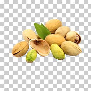 Nut Pistachio Euclidean Almond PNG