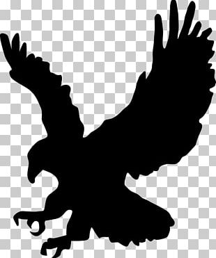 Bald Eagle Silhouette PNG
