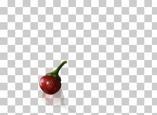 Chili Pepper Food Pimiento Peperoncino Bell Pepper PNG