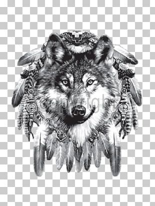 Indian Wolf Dreamcatcher Native Americans In The United States Indigenous Peoples Of The Americas Cherokee PNG