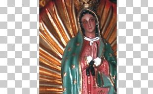 Our Lady Of Guadalupe Saint Queen Of Heaven Photography PNG