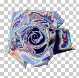 Rose Family Textile PNG