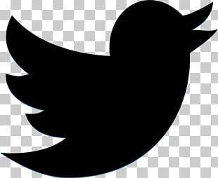 Social Media Marketing Grindr Social Networking Service PNG