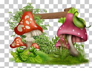 Leaf Vegetable Natural Foods Diet Food PNG