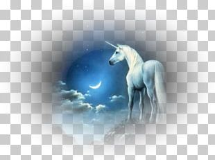 Unicorn Animation Pegasus Desktop PNG