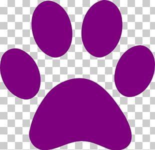 Dog Cougar Cat Paw Tiger PNG