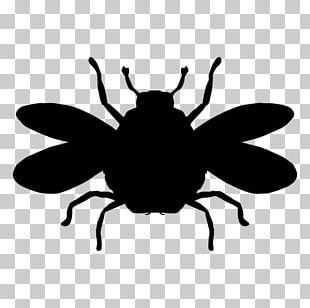 European Dark Bee Insect Bumblebee PNG