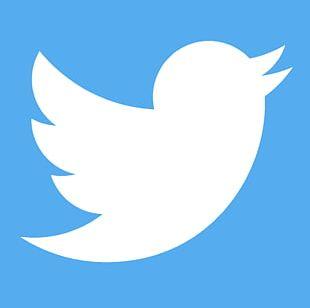 Social Media Marketing Social Networking Service Blog PNG