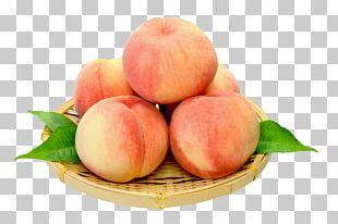 Juice Peach Fruit Auglis PNG