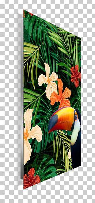 Floral Design Frames Modern Art PNG