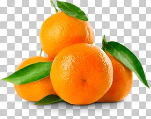 Mandarin Orange Clementine Tangerine Tangelo Fruit PNG