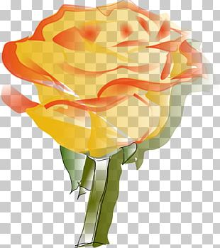Rose Scalable Graphics PNG