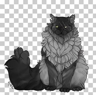 Black Cat Whiskers Warriors Character PNG