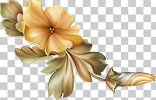 Cut Flowers Watercolour Flowers Garden Roses Floral Design PNG