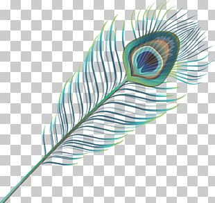 Feather Wing Google S PNG