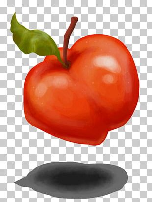 Bell Pepper Food Chili Pepper Drawing Art PNG