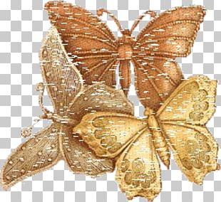 Monarch Butterfly Gold PNG