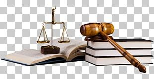 Law Firm Lawyer Legal Aid Law Society PNG