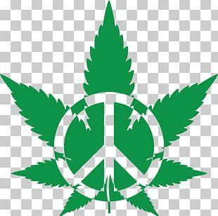 Medical Cannabis Leaf PNG