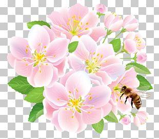 Flower Delivery Floristry Studio Ghibli PNG